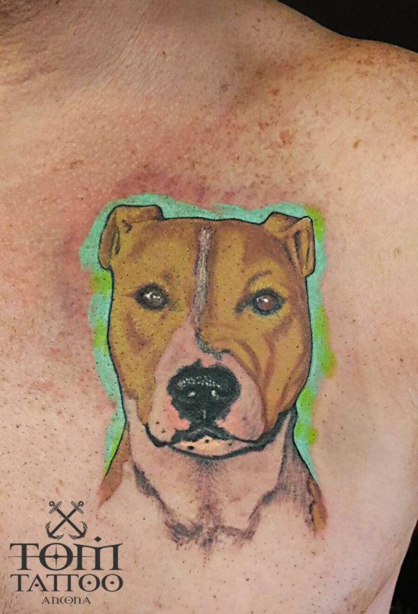 Tatuaggio ritratto cane