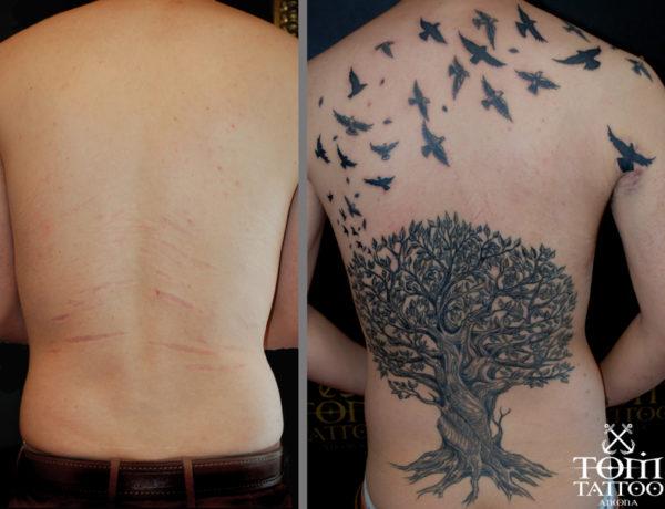 Copertura di cicatrici su schiena con albero e rondini